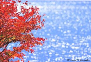 autumn032