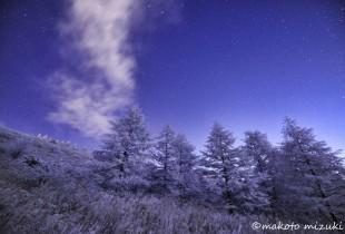 winter019