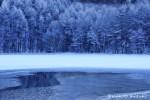 winter020